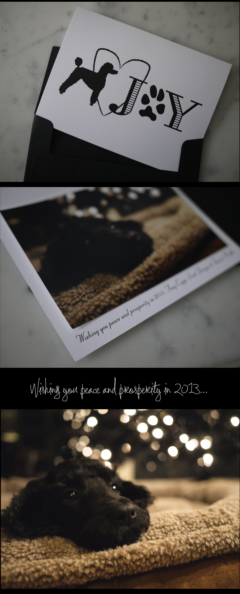 Wishing-you-peace-and-prosperity-in-2013