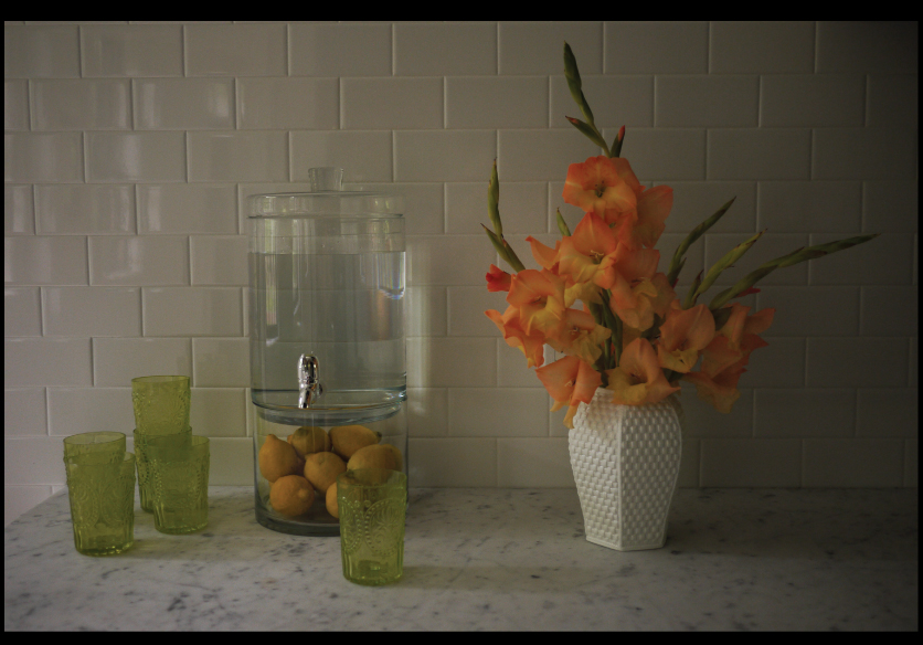 gladiolus-on-the-kitchen-counter