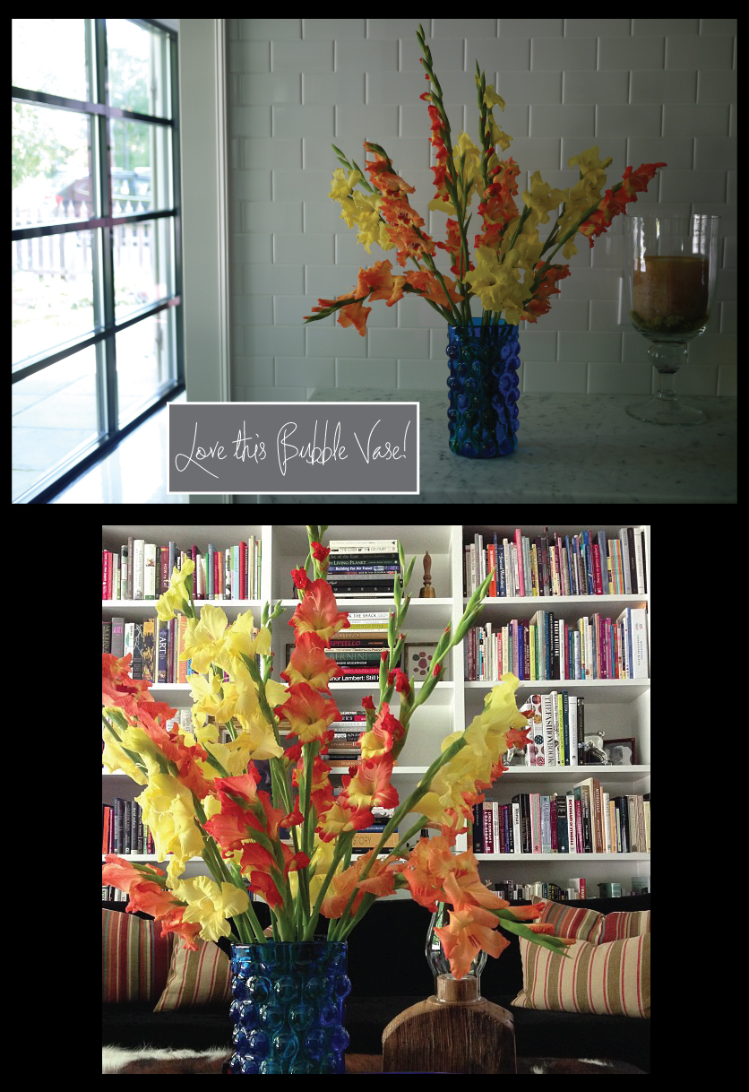 Gladiolus-for-the-Library