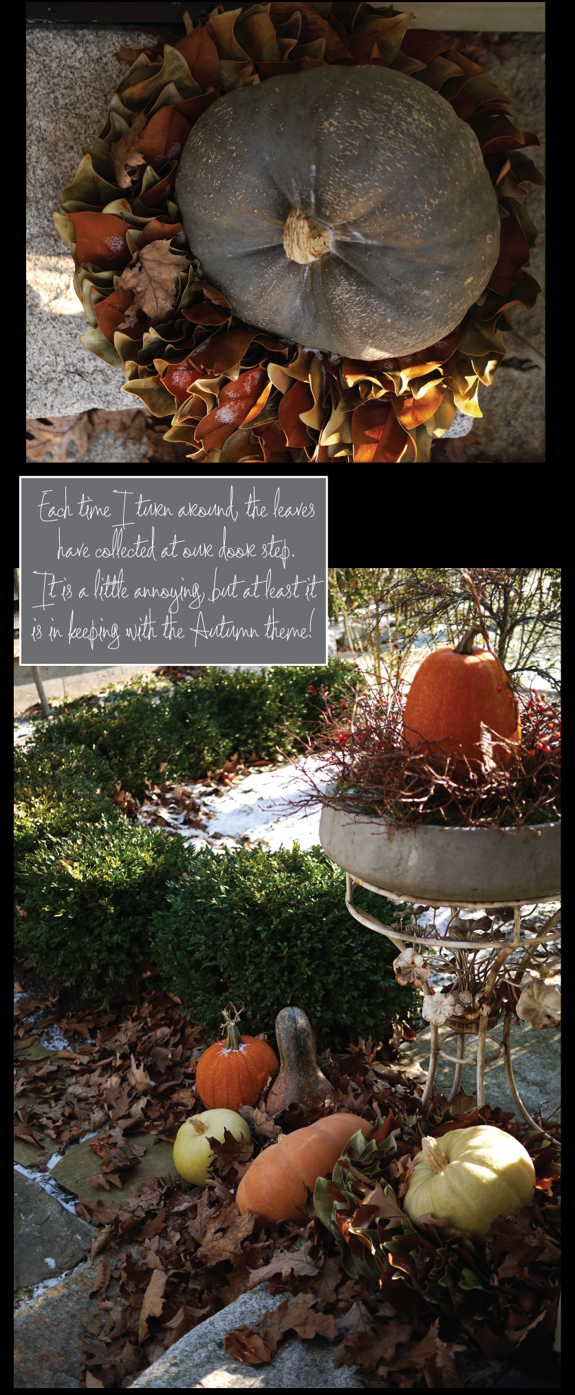Autumn-arrangement-outside-our-front-door