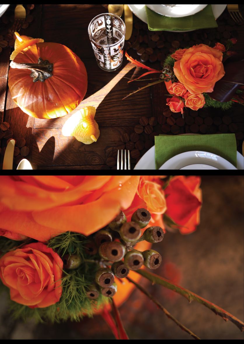 Fresh-Thanksgiving-Tabletop-Design