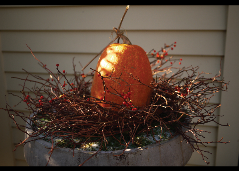 No-flower-arrangment-or-holiday-decor-is-worth-getting-lyme-over