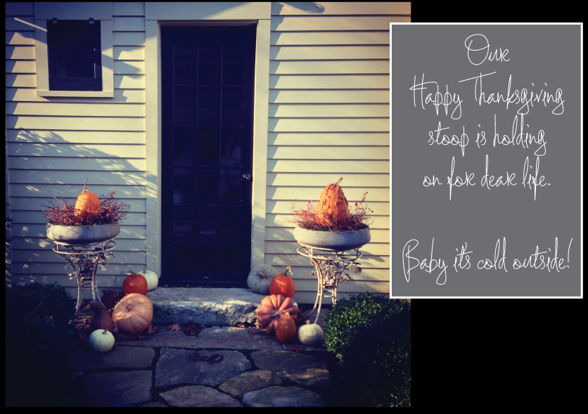Thanksgiving-Stoop