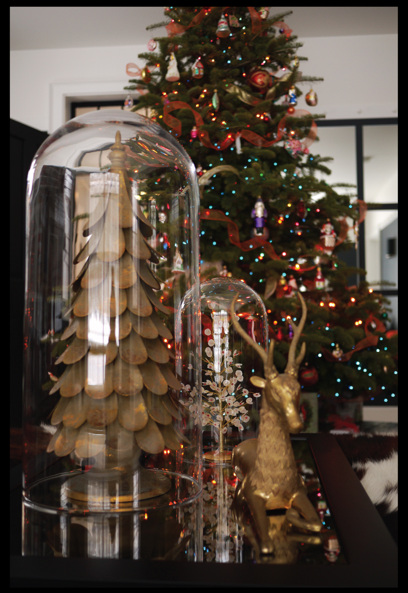 Christmas-Decorations-under-a-Glass-Dome