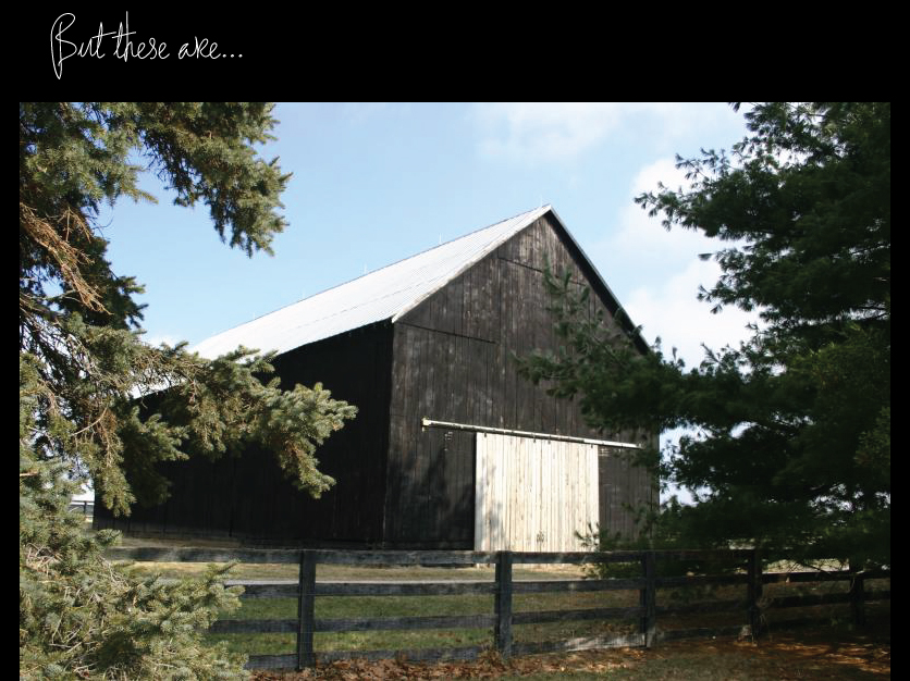 Black-Stained-Barn-with-a-light-grey-roof