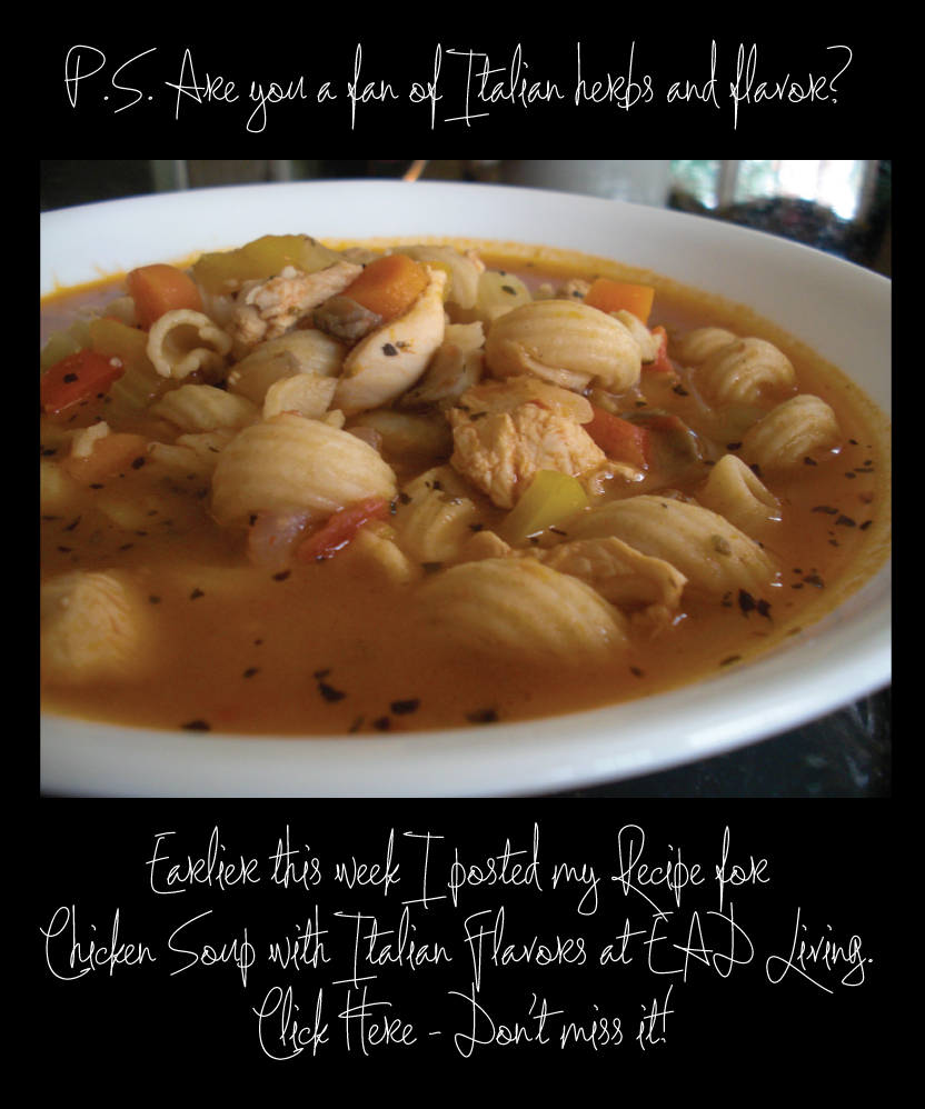 ABCD's Chicken Soup with Italian Flavors