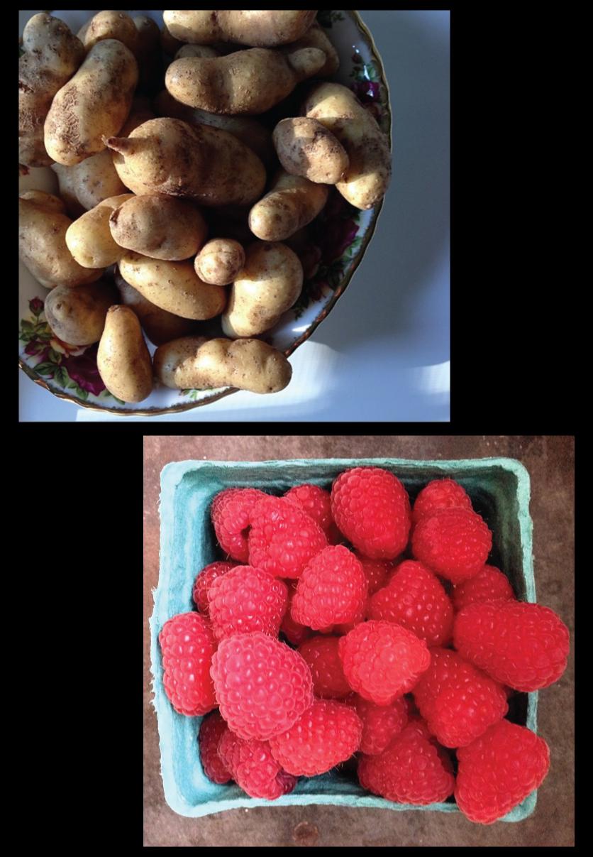 fingerling-potatoes-and-raspberries