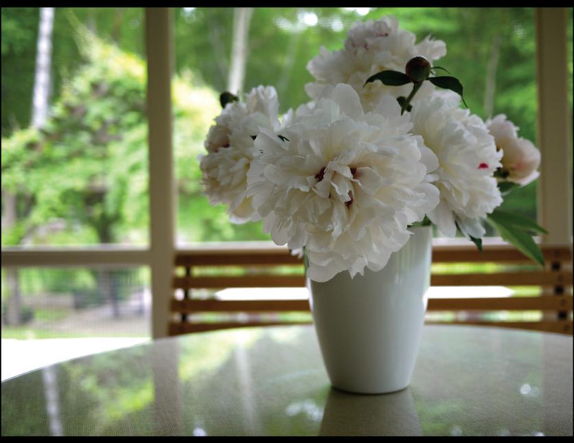 peonies-from-the-garden