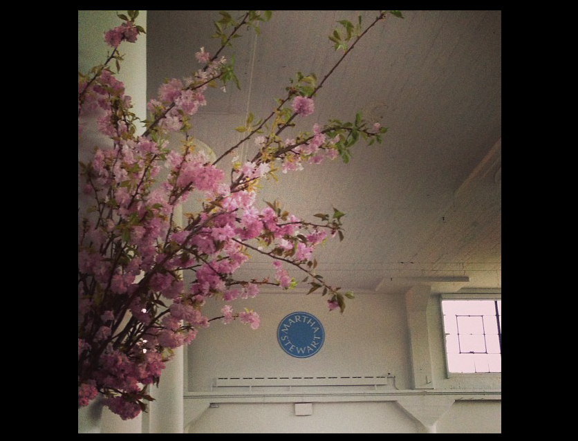 Cherry-Blossoms-at-Martha-Stewart-Headquarters-in-New-York-City