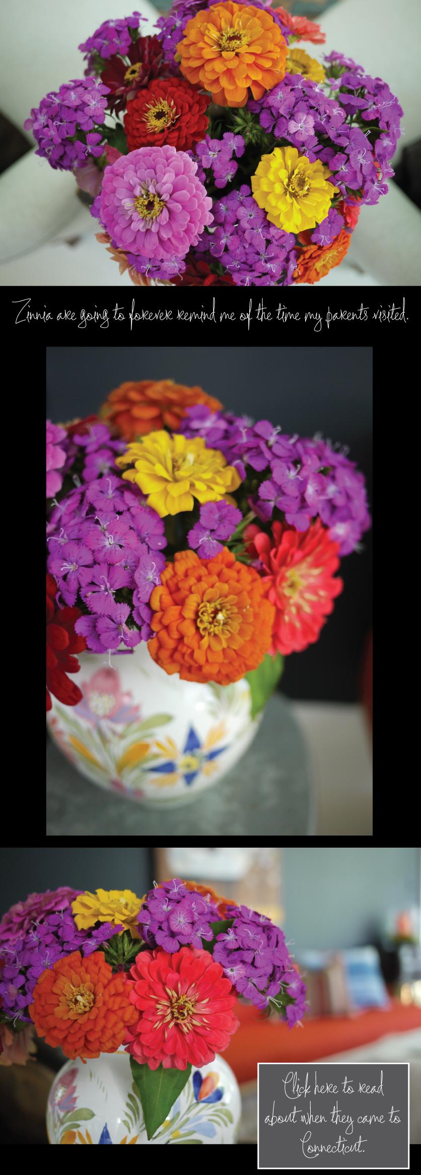 Zinnia-Flower-Arrangements