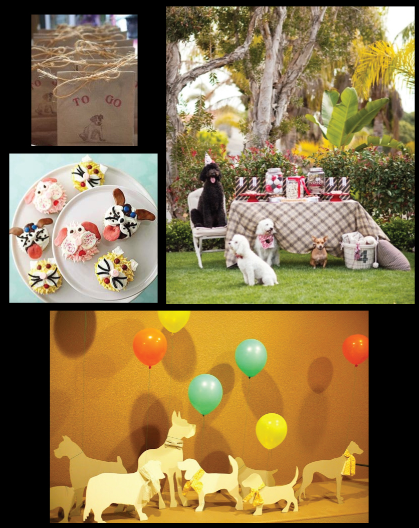 It's-a-dog-party-Pinterest-Board