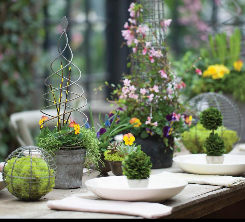 Garden-Tablescape-by-Terrain