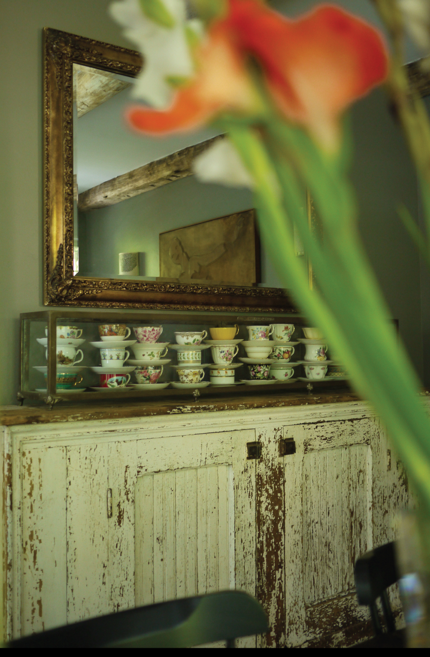 Gladiolus-in-the-Dining-Room
