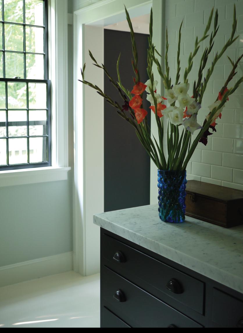 Gorgeous-Gladiolus