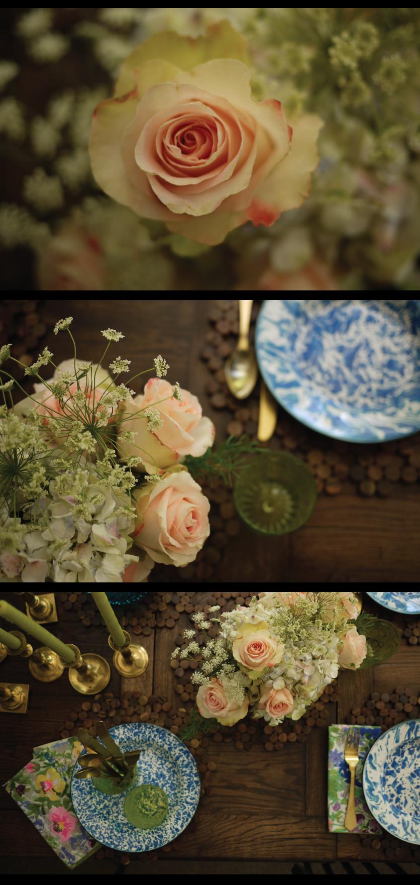 peach-abuade-roses