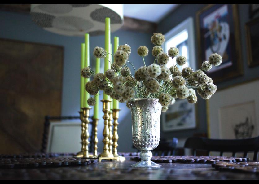 Dried-Flower-Skeletons