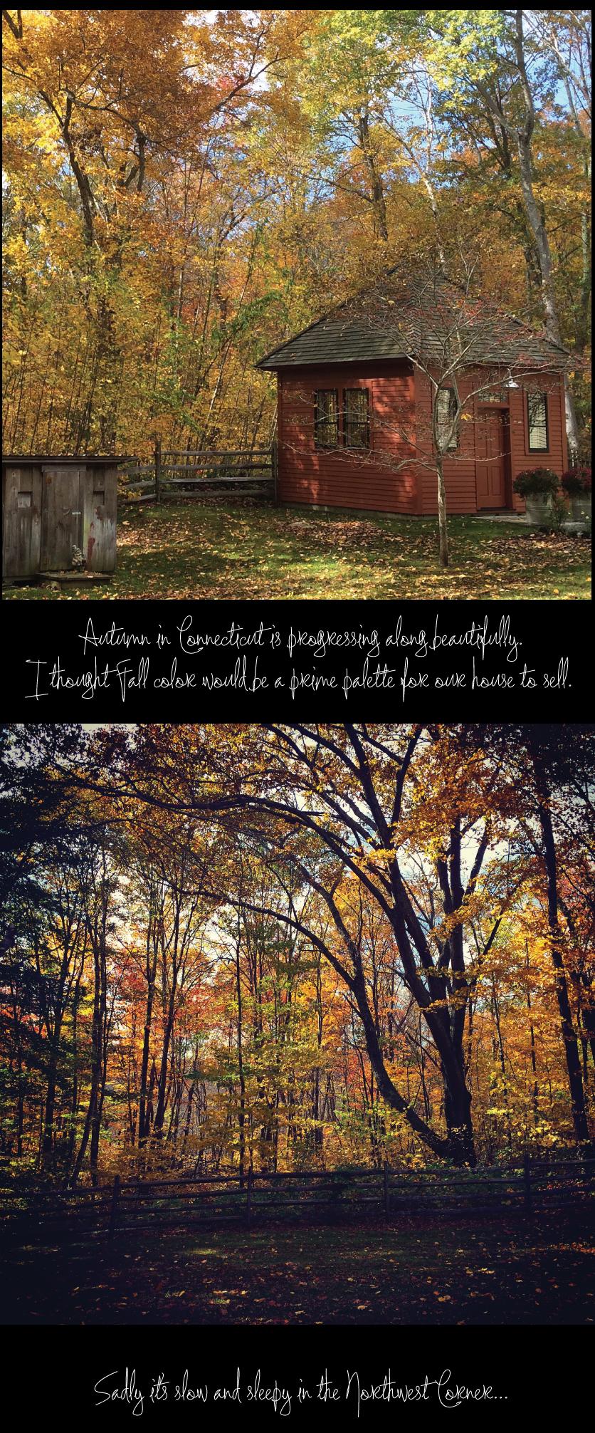 Autumn-in-Northwest-Connecticut