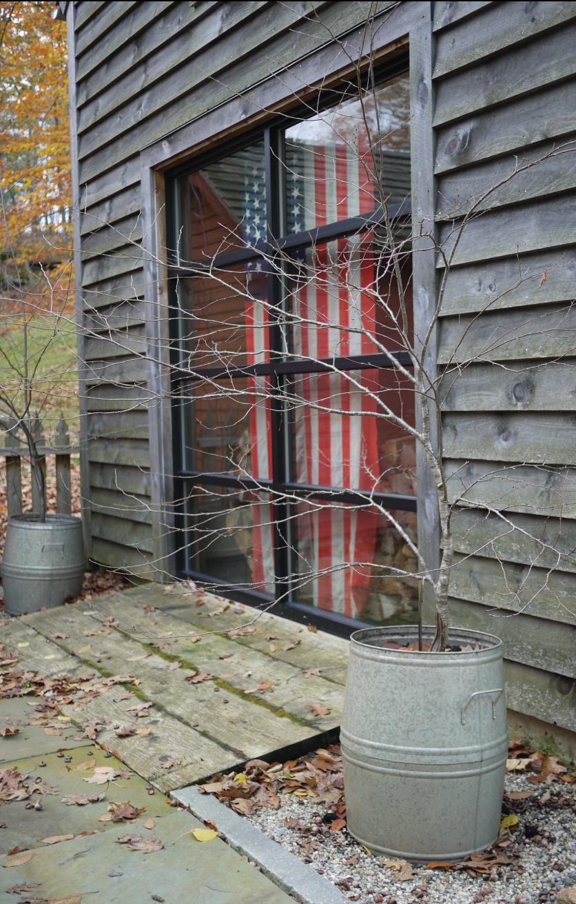 Branches-in-Galvanized-Pots