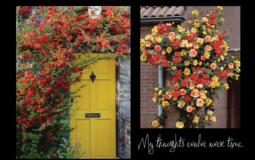 Stone-house-with-a-Yellow-Door-and-Climbing-Roses