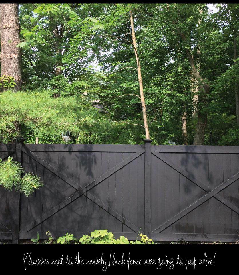 Black-Privacy-Fence